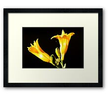 Yellow Yellow Framed Print
