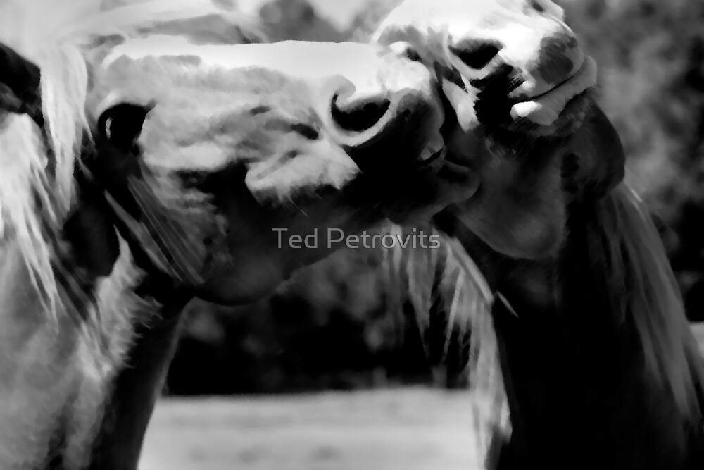 kiss on the cheek by Ted Petrovits