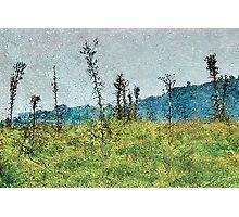 Grunge Style Nature Artwork Photographic Print