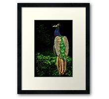 On the Hedge Framed Print