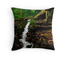 Grist Mill Flume Diverted Throw Pillow