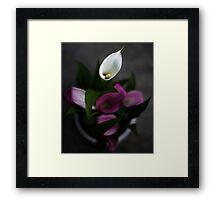 Calle lillies Framed Print