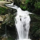 Kamyanka waterfall by Elena Skvortsova