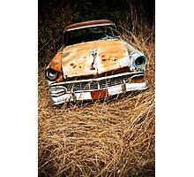 Superannuated Photographic Print
