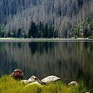 Plešné Jezero by Ethem Kelleci