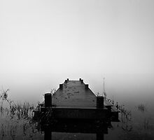 Jetty and Reeds by southsideimages