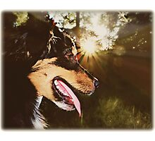 A best friend who beams... Photographic Print