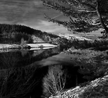 Derwent Reservoir, Winter Vista by Rees Adams