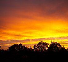 My tonight's sunset... 4 - a purple fringe...  by steppeland
