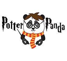 Potter Panda Photographic Print