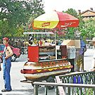 Hot Dog Stand by kpitre