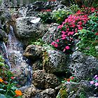 Garden Of Eden by patti4glory