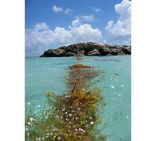 Bahamas Photographic Print