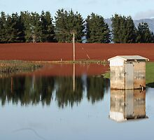 Pump Shed, Sunnyside, Tasmania by Tania Russell