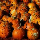 Bumpy Pumpkins by Mattie Bryant