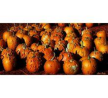 Bumpy Pumpkins Photographic Print