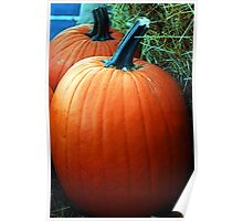 Country Pumpkin  Poster