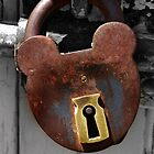 Locked - NSW by CasPhotography