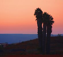 San Diego Sunset by Heather Friedman