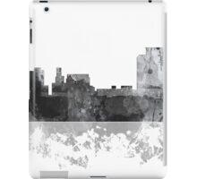 Trenton, New Jersey Skyline iPad Case/Skin