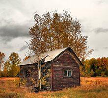 Autumnal hut by zumi