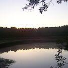 Sunset on Albritton's Pond by Dan McKenzie