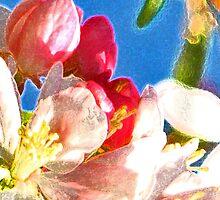 Fruits of Spring by Marina Raspolich