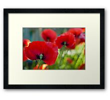 Red all over the Place Framed Print