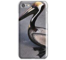 Posing Pelican iPhone Case/Skin