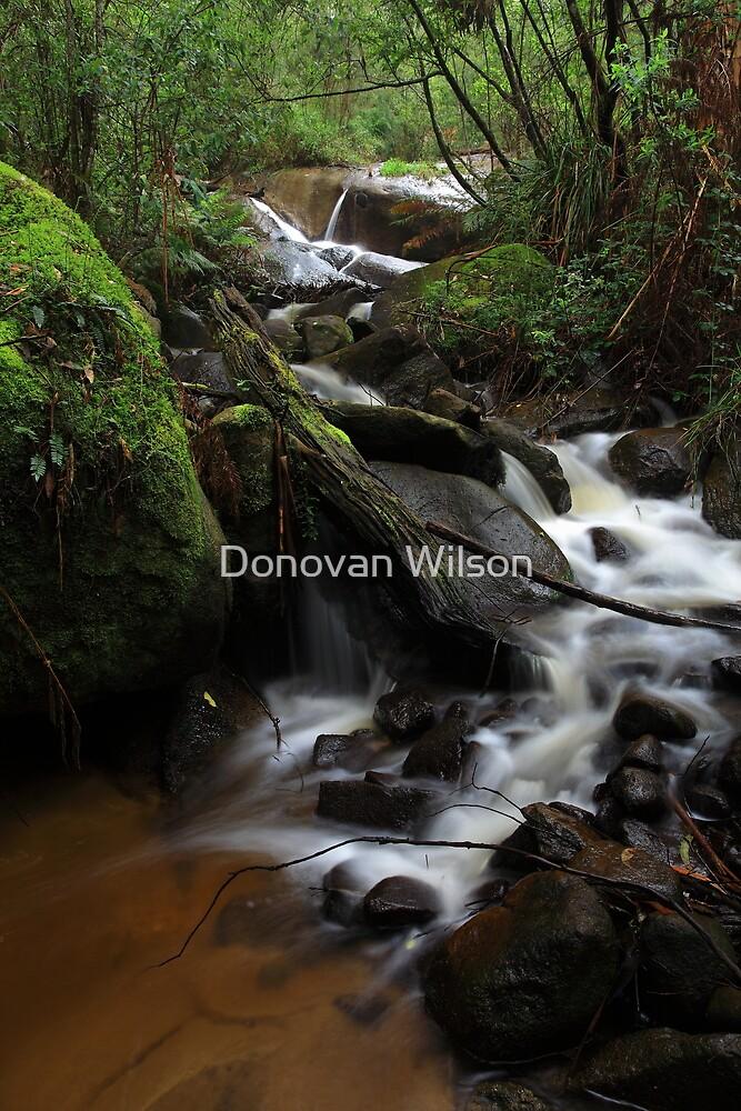 Britannia Creek Falls by Donovan Wilson