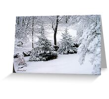 It's a Marshmallow World in the Winter Greeting Card