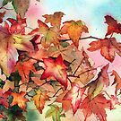 Autumn Branches by Ann Mortimer