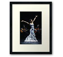 Finale del funcionamiento del flamenco Framed Print