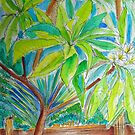 Frangipani Tree by marlene veronique holdsworth
