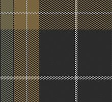 02906 Evergreen Fashion Tartan by Detnecs2013