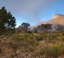 Early Morning Light - Guadalupe Mountains by Stephen Vecchiotti