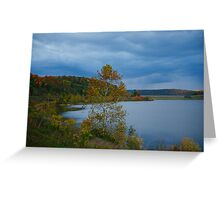 The Tioga Hammond Lake Greeting Card