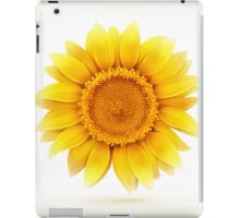 MELSUN iPad Case/Skin
