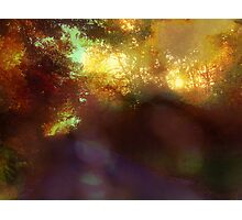 your love is an eternal autumn in my soul Photographic Print