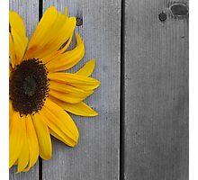 Sun Corner Photographic Print