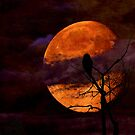 Harvest Moon Rising by welchko