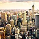 Skyline of Manhattan, NYC by danwa