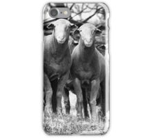 Looking at you looking at us looking back! iPhone Case/Skin