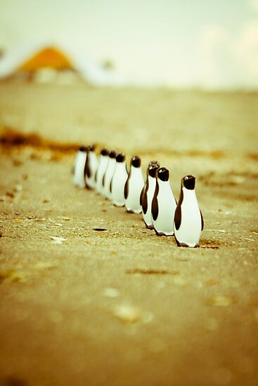 Penguins going for a walk by iulix