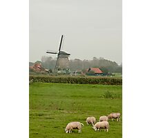Typical Dutch Photographic Print
