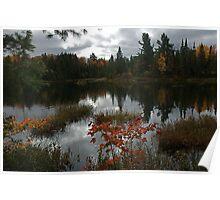 Peck Lake Algonquin Park Ontario Canada Poster