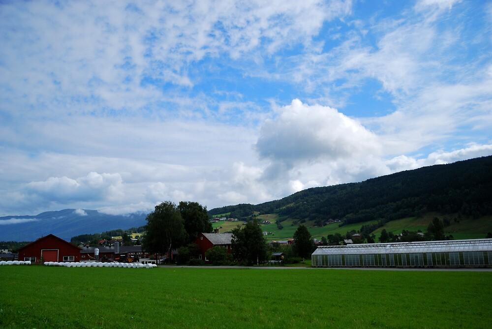 Green field and blue sky by Dfilyagin