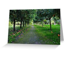 Orange garden in Sicily, Italy Greeting Card