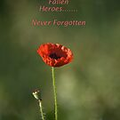 Remember Our Fallen Heroes........Never Forgotten by Sandra Cockayne