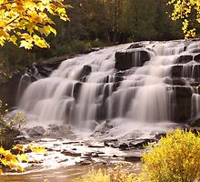Bond Falls In Autumn by Gina Ruttle  (Whalegeek)